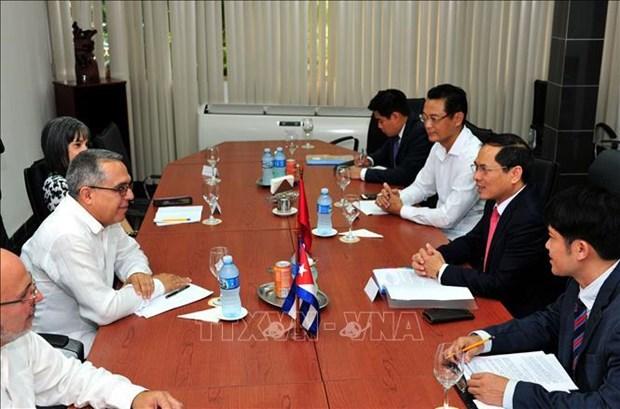 越南和古巴进行政治磋商 hinh anh 2