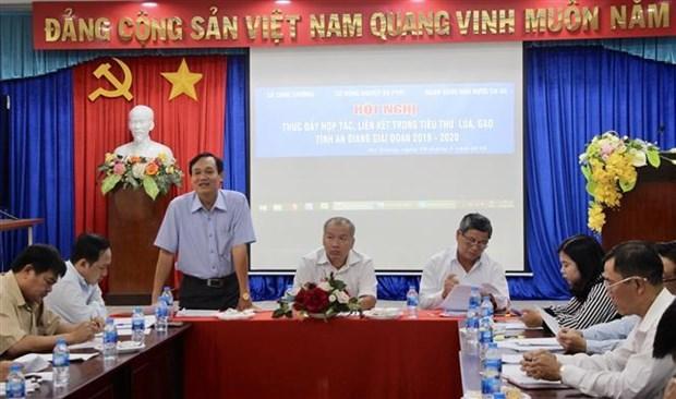 安江省促进稻米销售合作和连接 hinh anh 2