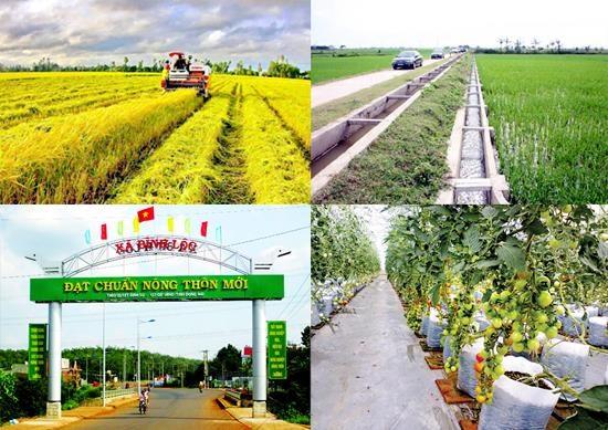 越南即将召开国家新农村建设目标计划实施10周年总结会议 hinh anh 1