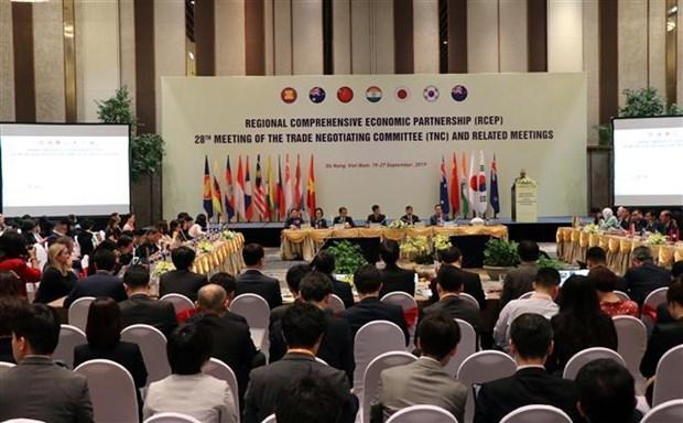 RCEP第28轮谈判在越南岘港市举行 hinh anh 2