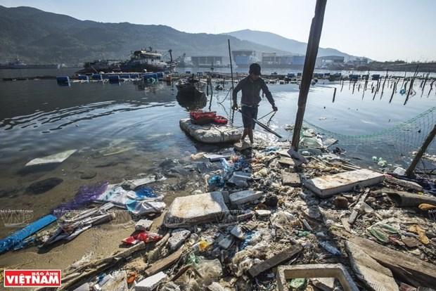 反海洋塑料垃圾运动 hinh anh 3