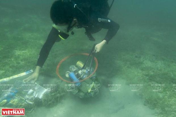 反海洋塑料垃圾运动 hinh anh 1