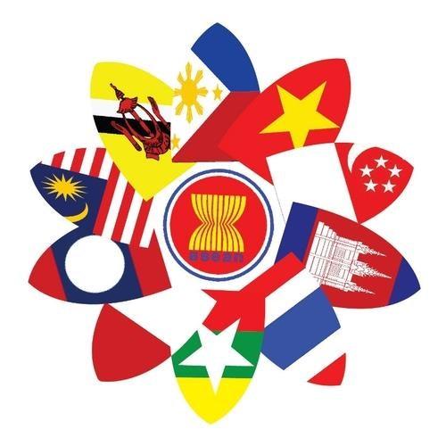 越南国防部为2020东盟轮值主席年的成功作出充分准备 hinh anh 2