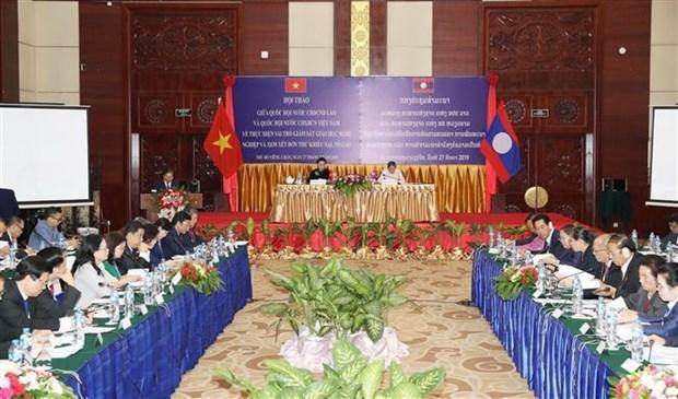 越老两国国会联合举行专题研讨会 hinh anh 1