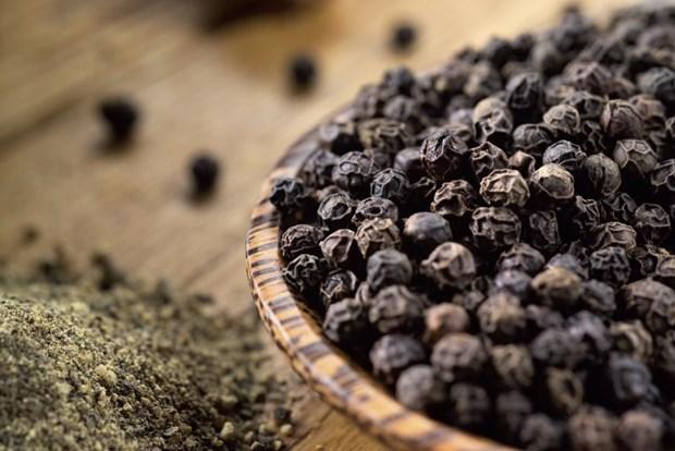 越南胡椒产品寻找出口可持续发展之路 hinh anh 1