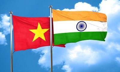 印度驻越大使:越南-印度合作关系在地区和国际事务中扮演着日益重要的作用 hinh anh 2