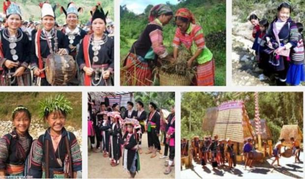 越南将于10月1日起对全国53个少数民族经济社会发展状况展开调查 hinh anh 1