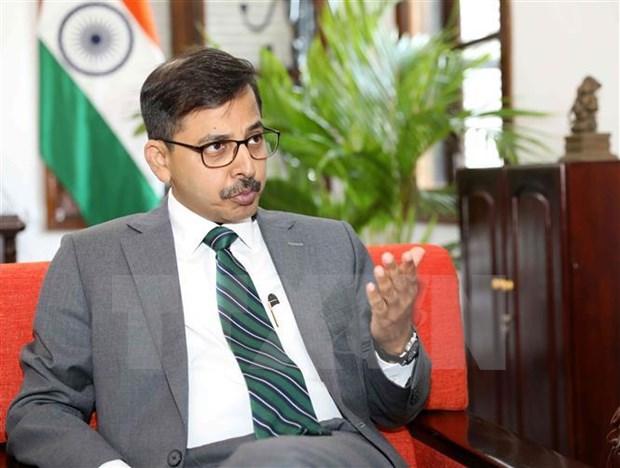 印度驻越大使:越南-印度合作关系在地区和国际事务中扮演着日益重要的作用 hinh anh 1