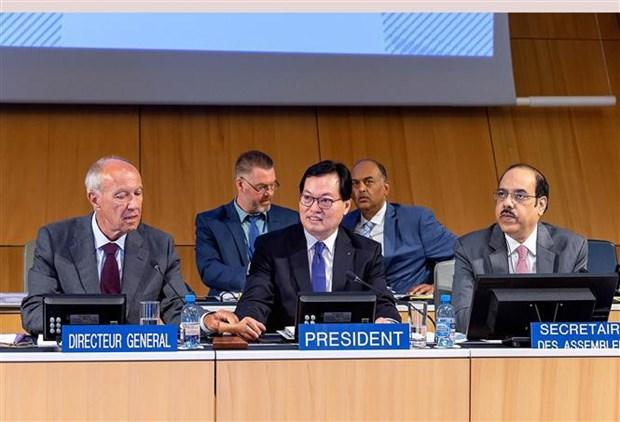 杨志勇大使:国际社会高度评价越南WIPO成员国大会主席的协调作用 hinh anh 1