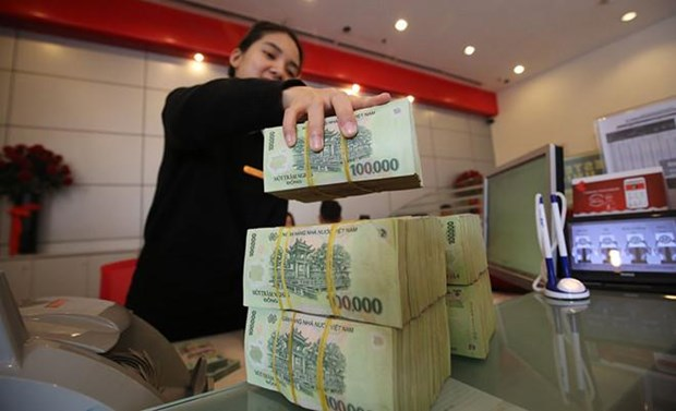 国家银行集中对优先领域安排资金 hinh anh 2