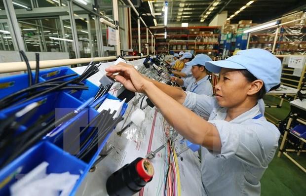国际专家:越南经济展现活力 hinh anh 1