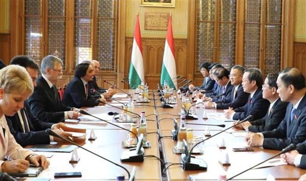 越南国会副主席冯国显对匈牙利进行工作访问 hinh anh 2