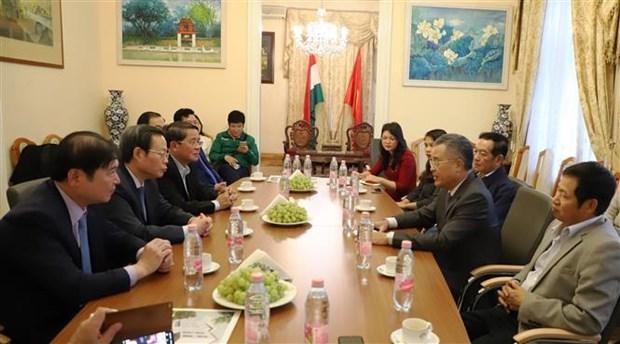 越南国会副主席冯国显对匈牙利进行工作访问 hinh anh 3