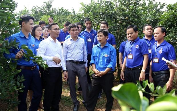 老挝人民革命青年代表团访问越南和平省 hinh anh 1