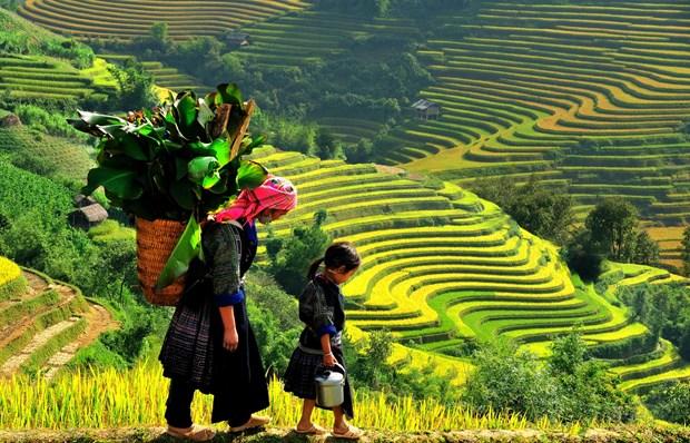 越南北部七个最佳秋季旅行目的地 hinh anh 2