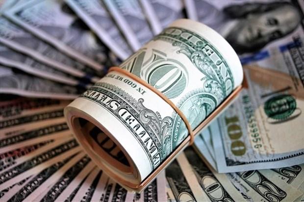 10月4日越盾对美元汇率中间价下调2越盾 hinh anh 1