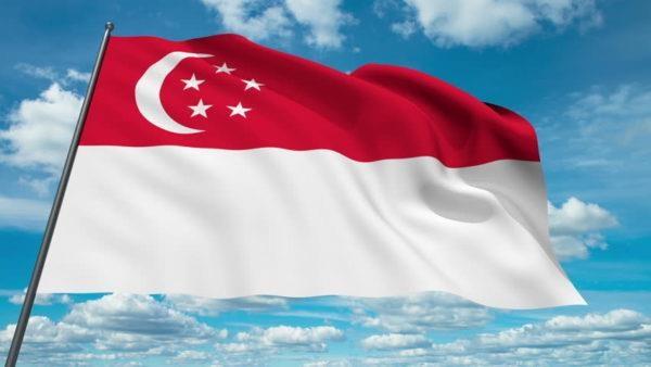 新加坡与欧亚经济联盟签署自由贸易协定 hinh anh 1