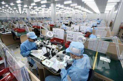 2019年第四季度胡志明市劳动力需求达7.5万 hinh anh 1