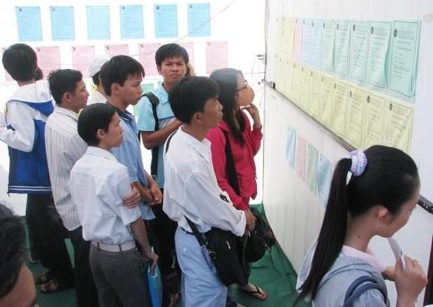金瓯省力争2018~2020年该省劳务输出1000人次 hinh anh 1