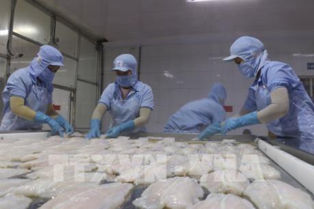 越南与以色列进出口商品结构互补性强 hinh anh 2