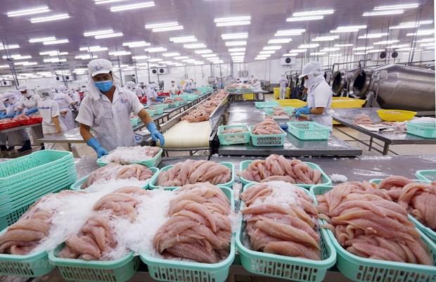 工业产品出口在前江省经济发展中扮演重要角色 hinh anh 1