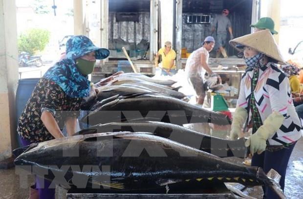韩媒:越南——充满经济机遇的国家 hinh anh 1