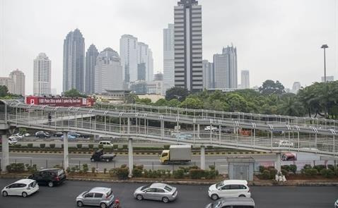 印度尼西亚为促进出口和投资活动对18项法律文件进行修改 hinh anh 1