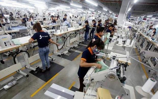 推动越南经济增长的新动力 hinh anh 1