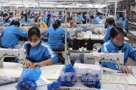 前9月越南纺织服装集团出口额超20亿美元 hinh anh 1