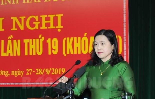 越南海阳省大力加快融入国际社会进程 hinh anh 1