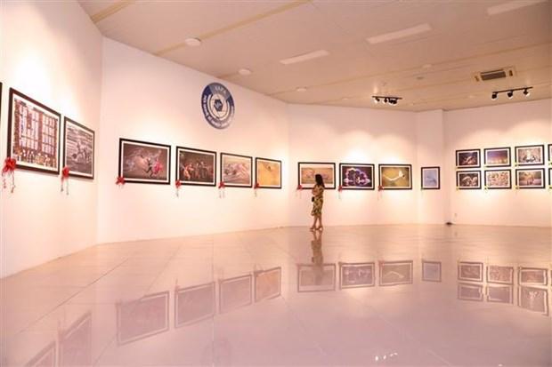 越南在国际摄影大赛荣获26个奖牌 hinh anh 1