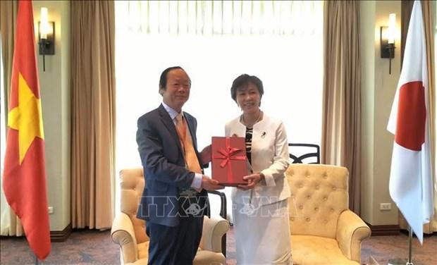 日本支持越南担任2020年东盟轮值主席国期间展开的环保优先事项 hinh anh 1
