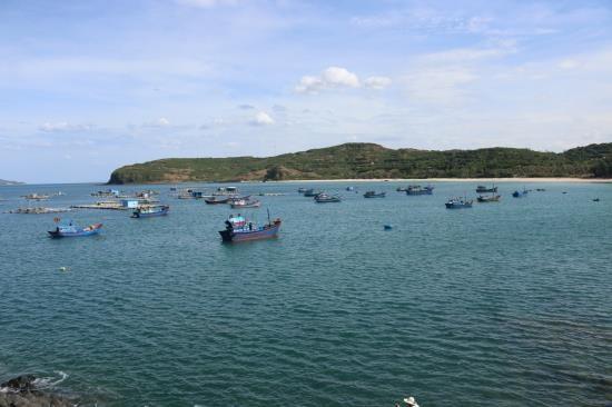 越南举办国家海洋经济核算体系测试结果咨询研讨会 hinh anh 1
