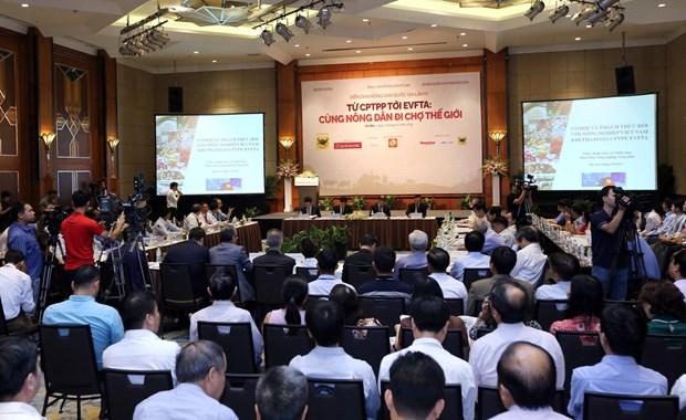 CPTPP和EVFTA协定激发越南农业爆发力 hinh anh 2