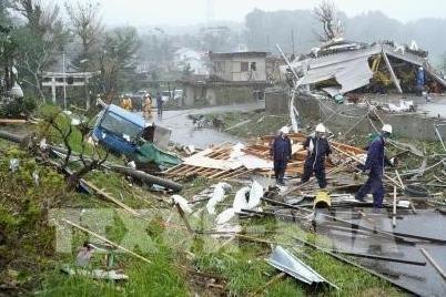 """日本超强台风""""海贝思"""":越南驻日本大使馆积极对越南公民开展领事保护工作 hinh anh 2"""
