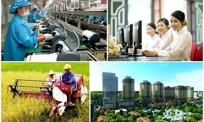 实施改革 更好满足市场经济的严格要求 hinh anh 1