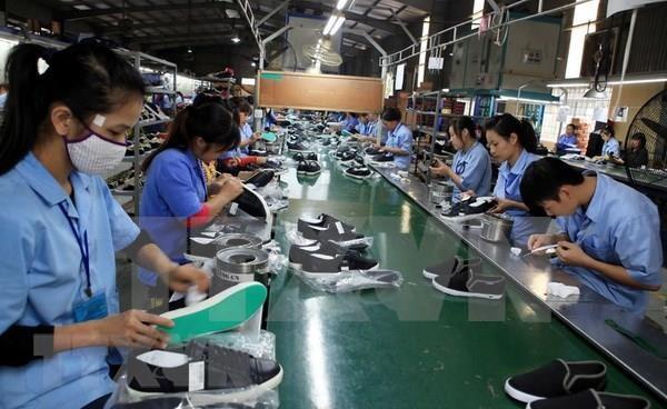 2019年越南皮革及鞋类产品出口额可突破220亿美元的大关 hinh anh 1