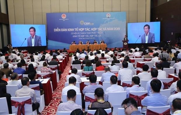 王廷惠副总理:合作社在集体经济中一直起着核心作用 hinh anh 4