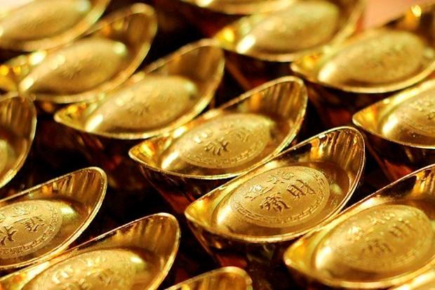 10月15日越南国内黄金价格小幅下降 hinh anh 1
