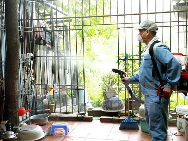 9月份胡志明市登革热病例同比增长124% hinh anh 1