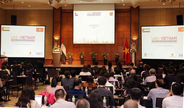 越南与阿联酋促进经贸投资合作 hinh anh 1