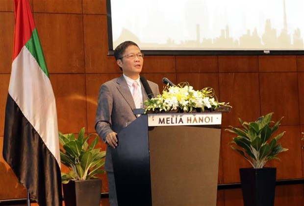 越南与阿联酋促进经贸投资合作 hinh anh 2