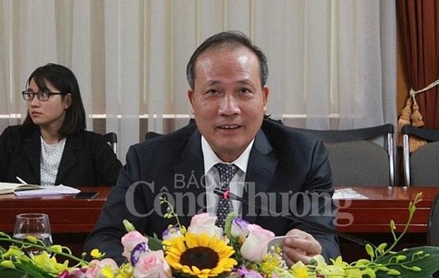 越南与南非促进经贸合作 hinh anh 2