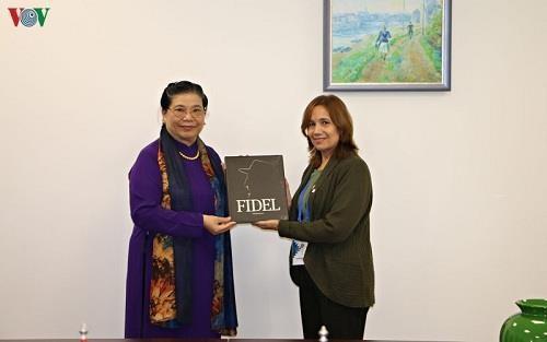 越南国会副主席丛氏放与IPU主席和古巴国会副主席举行双边会晤 hinh anh 2