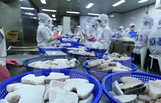 英国专家高度评价越南的国际一体化和投资机遇 hinh anh 1