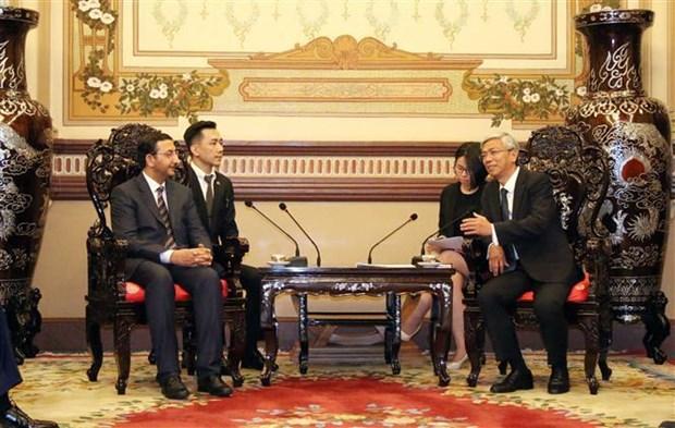 促进胡志明市与阿联酋的合作关系 hinh anh 1