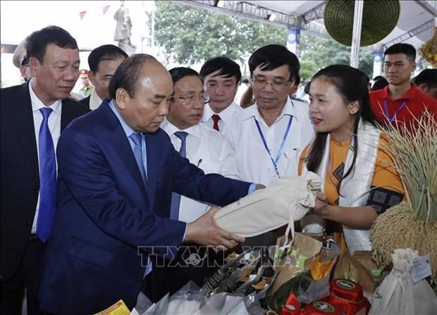 阮春福总理出席新农村建设10年成就展开幕式 hinh anh 1