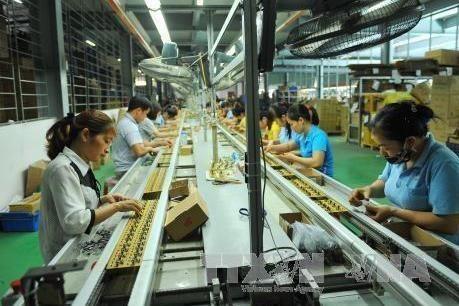 越南私营企业可持续发展的六大措施 hinh anh 2