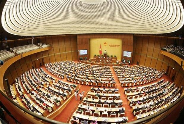 越南第十四届国会第八次会议隆重开幕 hinh anh 3