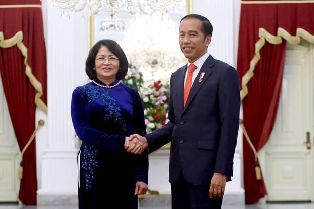 越南国家副主席邓氏玉盛会见印尼总统佐科·维多多 hinh anh 2